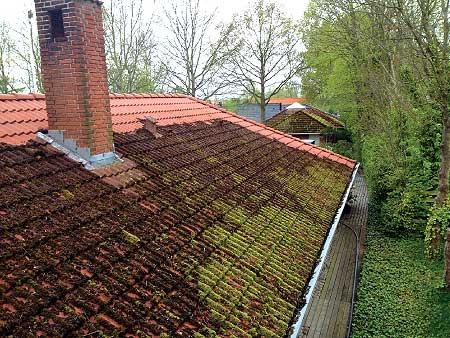 Rensning af mos og alger på taget